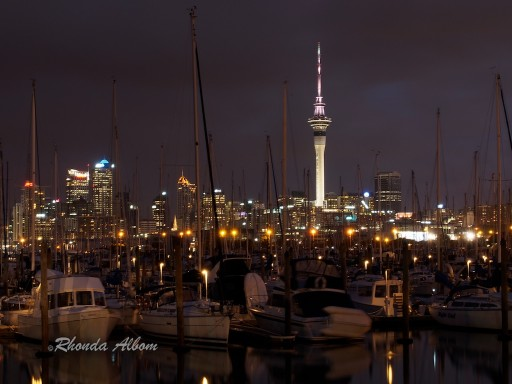 night photography of auckland skyline