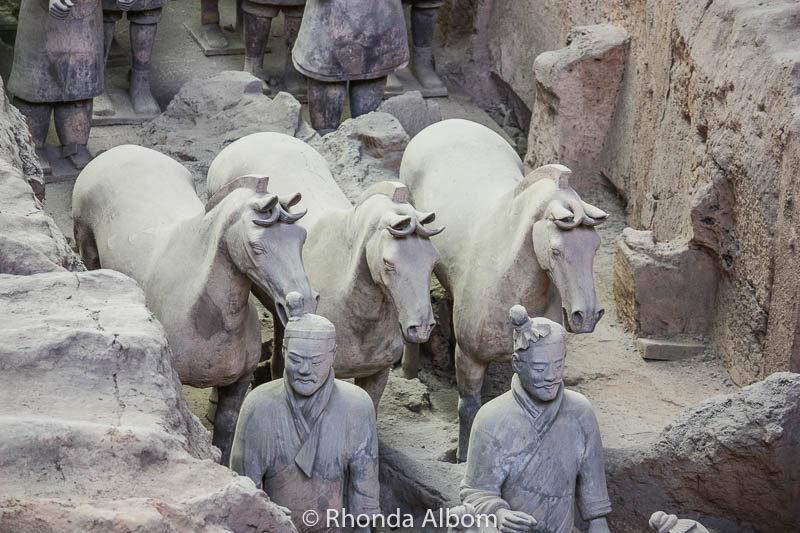 """Horses"