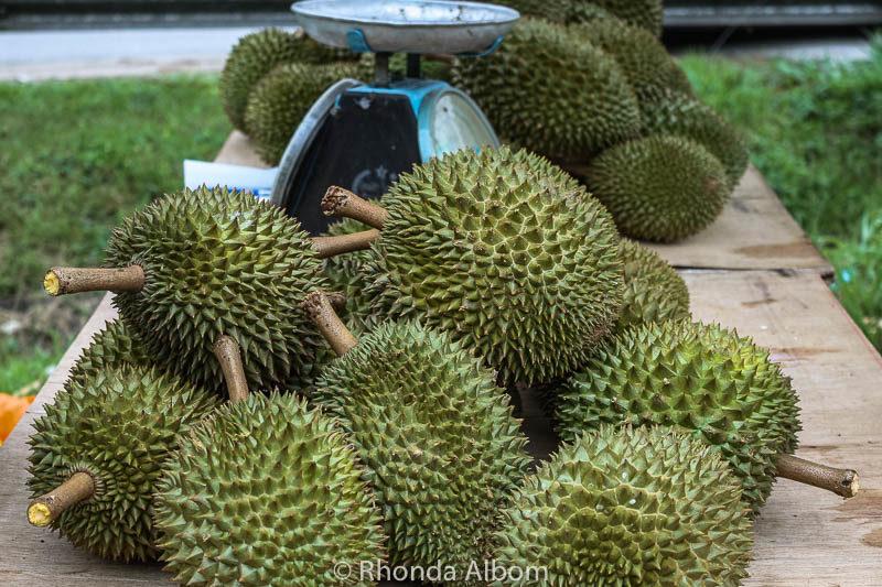Durian fruit in Malaysia