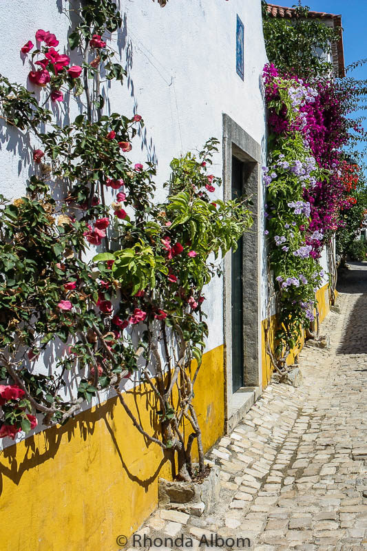 Fragrant and colourful flowers climb of the houses and shops along the Rua Direita, the main street of Obidos Portugal.