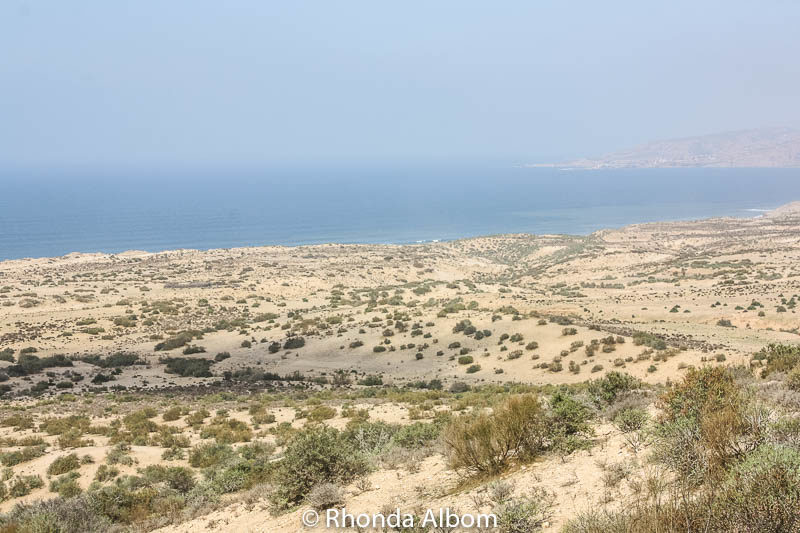 A barren and misty coastline as we drove from Essaouira to Agadir in Morocco