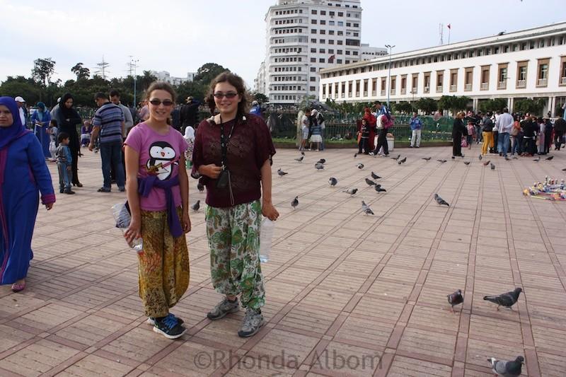 birds in casablanca, Morocco