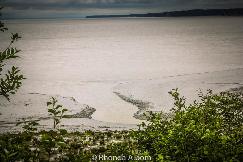 Glacial silt spotted at the coastline as we drove from Anchorage to Whittier in Alaska
