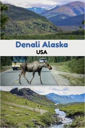 Hiking, rafting, or nature, there are many things to do in Denali National Park in Alaska, home to wildlife and Mt. Kinley, North America's highest peak.