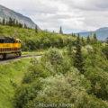 Denali Star train in Alaska