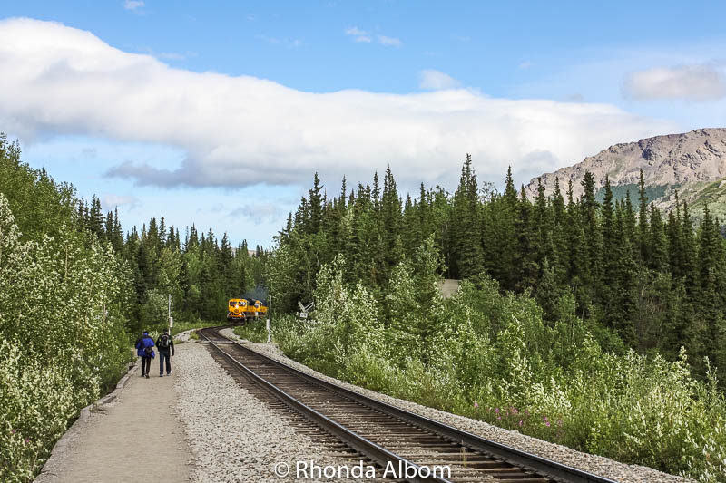 Alaska Railroad arriving in Denali Alaska