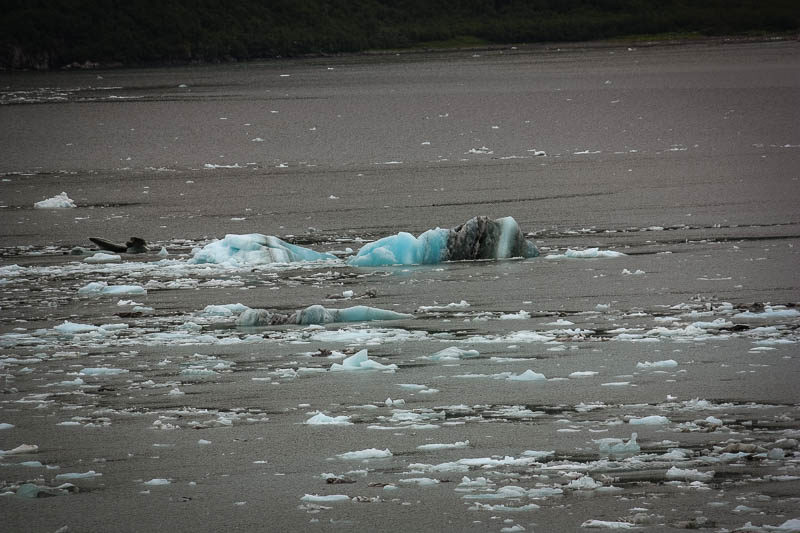 Floating glacial ice in Alaska