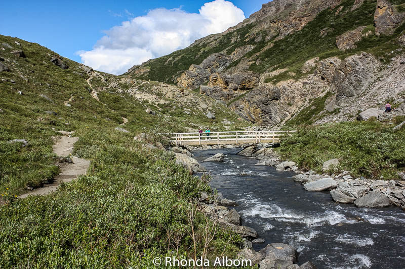 The bridge allows hikers to explore both sides of Denali's Savage River in Alaska