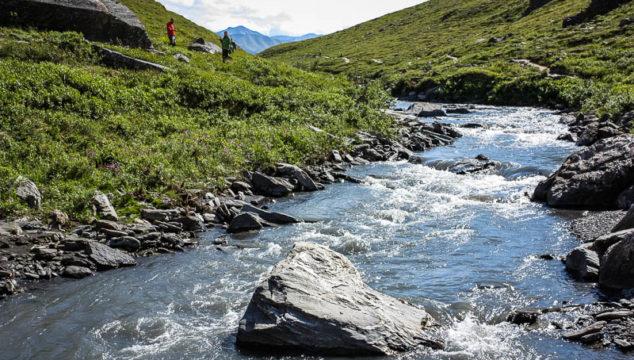 Hiking Savage River Trail in Denali National Park, Alaska