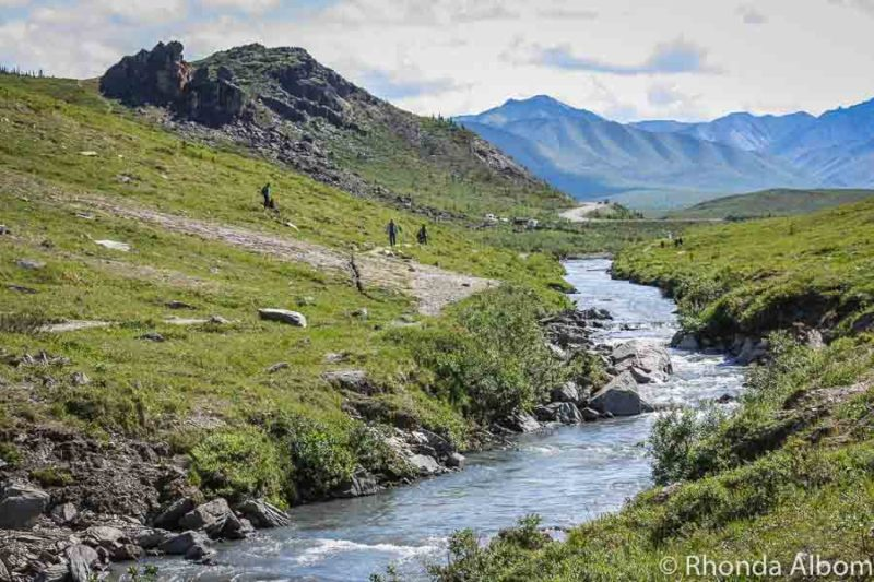 Hiking along Savage River is one of the free things to do in Denali National Park.