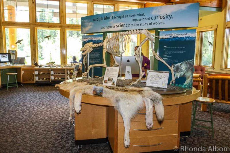 Denali National Park wilderness access center in Alaska