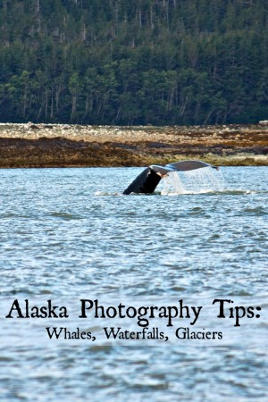 Photo tips for capturing whale tail shots., waterfalls, and glacier