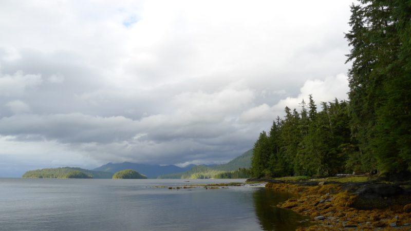 Ketchikan Shoreline in Alaska