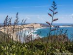 The beach near Cape Reinga is a great place to learn a few kiwi sayings