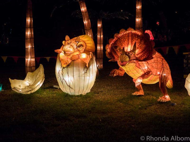 Auckland Lantern Festival, Auckland New Zealand