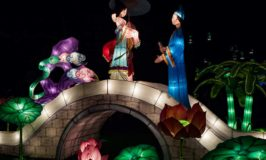 Auckland Lantern Festival: A Vivid Celebration of Chinese New Year