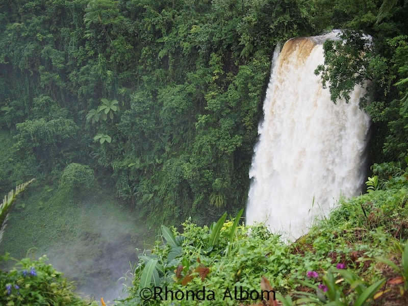 The rushing Fuipisia Falls in Samoa