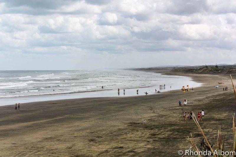Black sands of Muriwai Beach Auckland New Zealand