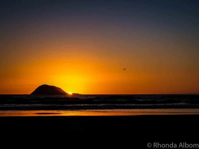 Sunset on Muriwai Beach New Zealand