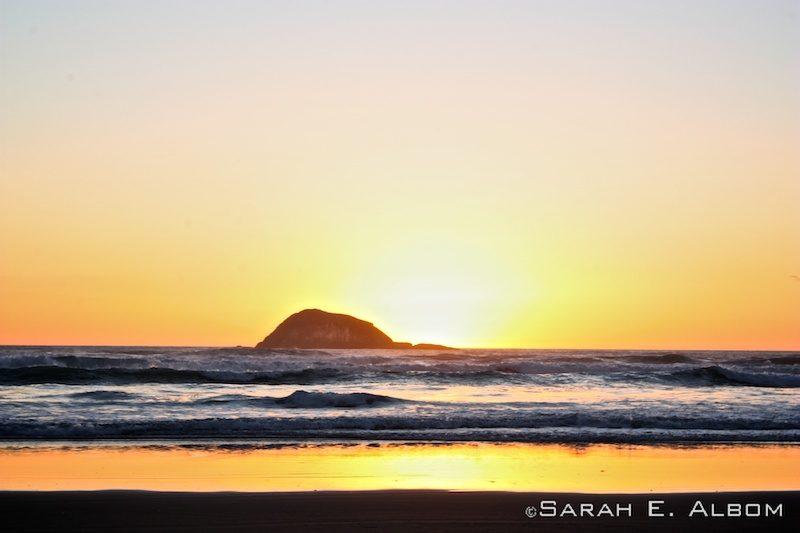 Muriwai beach, New Zealand. Photo copyright ©Sarah Albom 2014