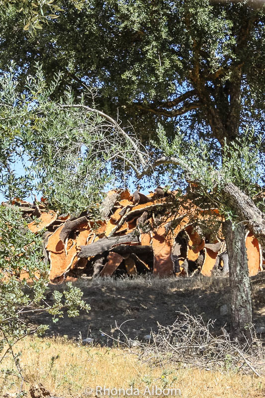 Piles of cork that has been removed from cork trees near Evora Portugal