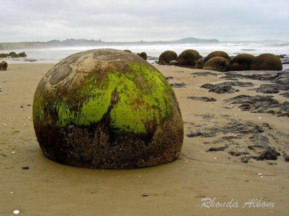 Moeraki Boulders on New Zealand's Koekohe beach on the South Island