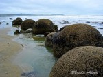 Moeraki Boulders – Let's Solve This New Zealand Mystery