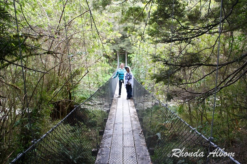 Swing bridge on hike to Monro Beach, South Island New Zealand