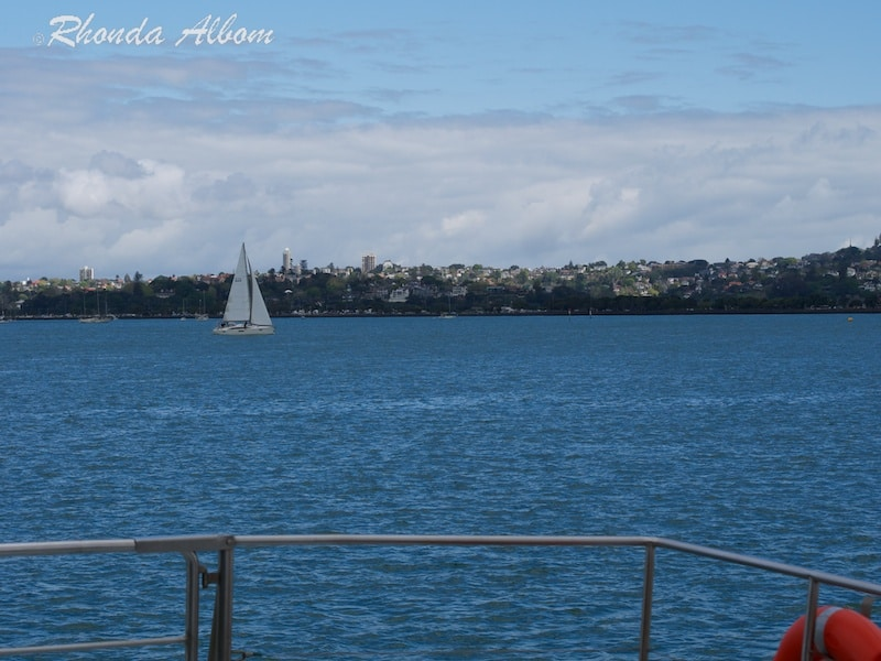 A sailing boat on the Waitemata Harbour, Auckland New Zealand