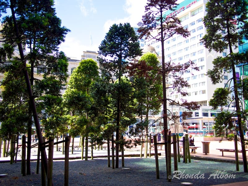 18 Kauri trees planted in Queen Elizabeth II Square in Auckland