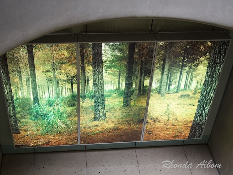 Light Box Trees by Michael Parekowhai in the Britomart pedestrian subway in Auckland New Zealand