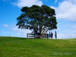 Girls hiking in Shakespear Park, Auckland New Zealand