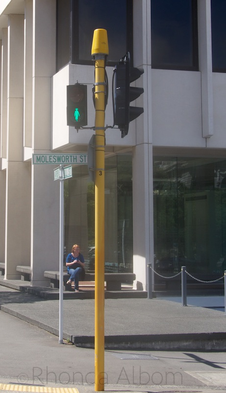 Unlike the other lights in New Zealand, the lights near parliament have a green outline Kate Shepard rather than a man