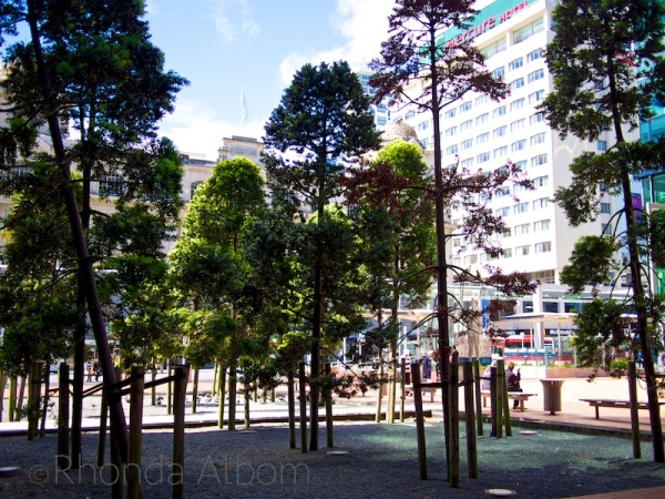 Articstic Patch of Trees on Auckland's Queen Street