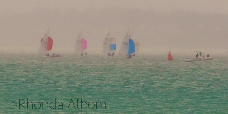 Flying Fifteens racing in the rain