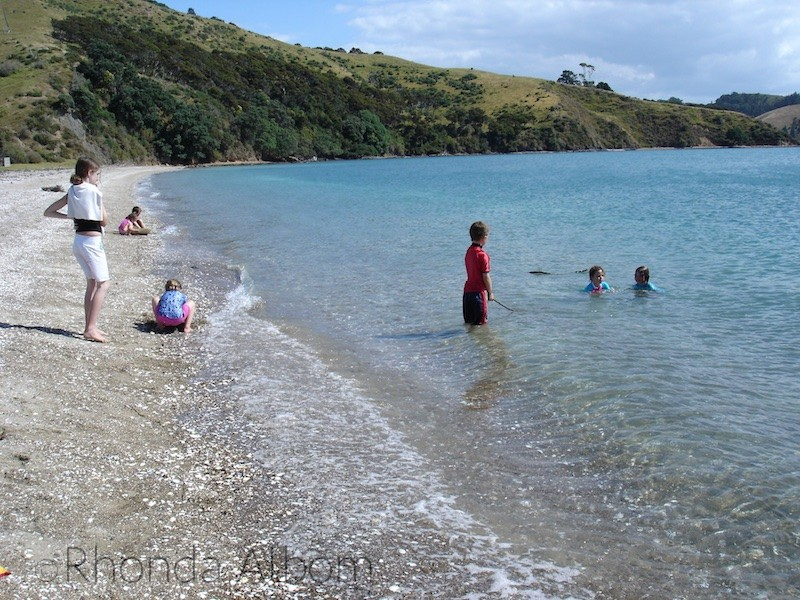 Shark Bay on Ponui Island in the Hauraki Gulf, Auckland, New Zealand