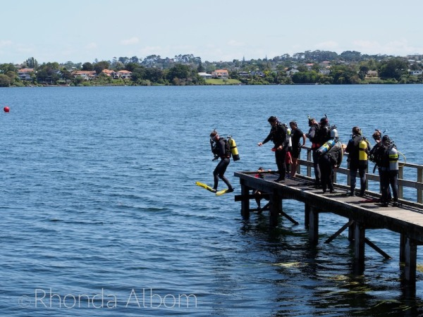 Diver jumping off the pier in Takapuna
