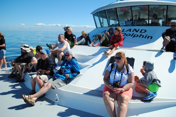 On the Auckland Whale and Dolphin Safari Boat in New Zealand
