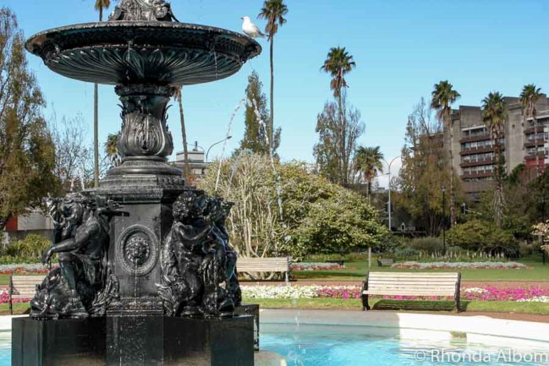 The fountain is near the centre of Albert Park Auckland New Zealand.