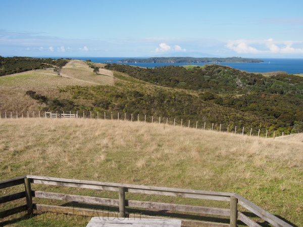 View from lookout tower at Shakespear Park, Auckland New Zealand