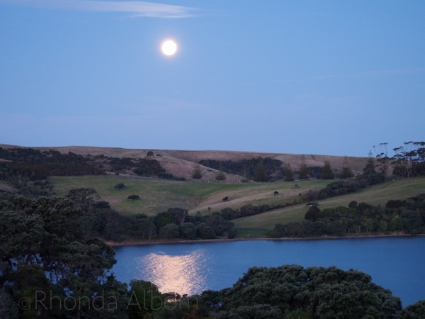 Full moon over Shakespear Park, Auckland, New Zealand before the lunar eclipse