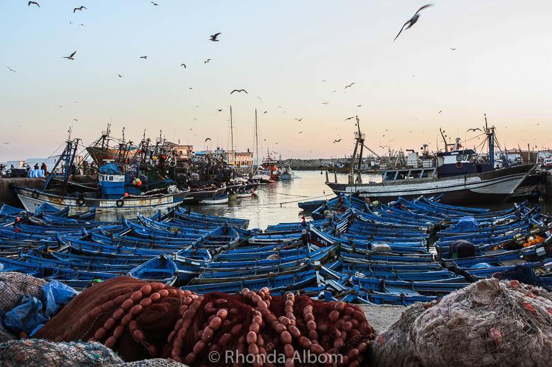 Boats in Essaouira Morocco