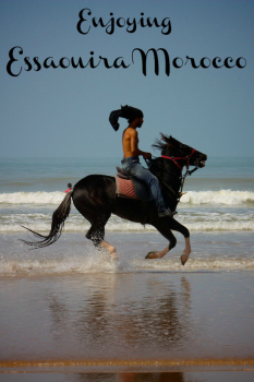 Riding the surf in Essaouira Morocco on Horseback
