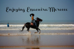 Essaouira: We Saw Surfers, Horses, and Camels on this Moroccan Beach