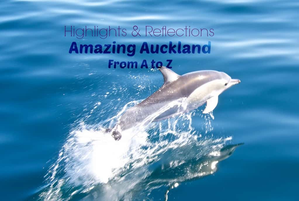 Amazing Auckland from AtoZ - highlights and reflections