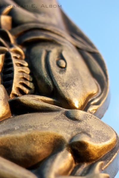 Bronze Frogs at Shakespear Park, Auckland, New Zealand - Photograph copyright Sarah E. Albom 2015