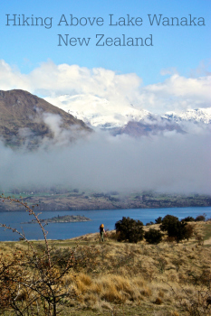 Hiking on Mount Iron, enjoying views of Wanaka New Zealand