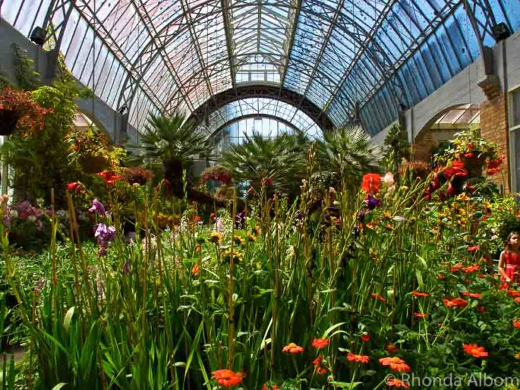 Breathe in fragrant flowers and ferns at the Wintergardens