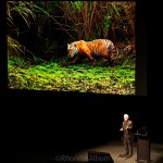 National Geographic Wildlife Photographer Steve Winter presenting in Auckland New Zealand