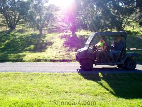 Returning to the Ranger Station in Shakespear Park, Auckland New Zealand